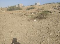 هشتصد متر زمین پشت ترمینال در شیپور-عکس کوچک