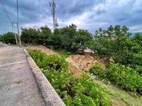 415 متر زمین واقع در سوادکوه زیراب در شیپور