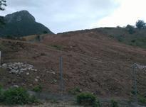 زمین 3000 متری در پاقلعه در شیپور-عکس کوچک