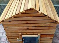 یک عدد قفس چوبی بزرگ در شیپور-عکس کوچک
