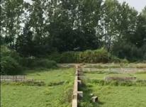 سرمایه گذاری امن زمین سند دار در شیپور-عکس کوچک