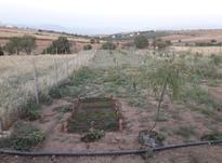باغ 1500 متر نزدیک بجنورد با خانه در شیپور-عکس کوچک