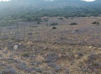 زمین مسکونی 330 متری در کجور ویسر دلسم در شیپور-عکس کوچک