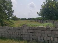 فروش زمین 2400 متر در بهنمیر در شیپور-عکس کوچک
