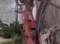 دوچرخه درحد در شیپور-عکس کوچک