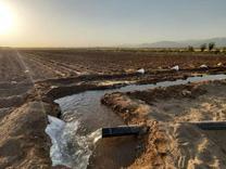 فروش زمین کشاورزی11000متری دررزکان نظراباد به بهترین قیمت در شیپور