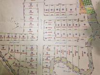 فروش زمین مسکونی 220 متر در خلیل شهر در شیپور