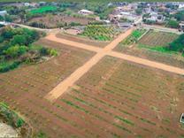 فروش زمین مسکونی 150 متر در خلیل شهر در شیپور