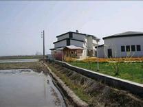 فروش زمین مسکونی 253 متر در گالشپل ساحلی در شیپور