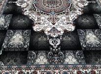 فرش خزان رنگ سرمه ای در شیپور-عکس کوچک