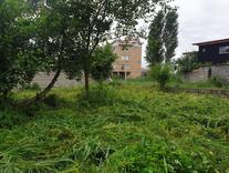 فروش زمین مسکونی 355 متر در تنکابن در شیپور