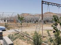 فروش زمین کشاورزی 10000متری در زرندیه در شیپور