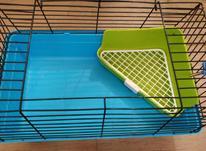 قفس خرگوش ، همستر ، خوکچه در شیپور-عکس کوچک