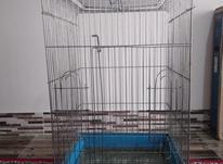 قفس کاسکویی 1033 در شیپور-عکس کوچک