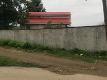 فروش زمین مسکونی 440 متر در صومعه سرا در شیپور