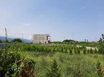 465 متر زمین شهرکی با انشعابات / نوشهر چلندر در شیپور-عکس کوچک