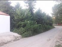 فروش زمین مسکونی 350 متر در صومعه سرا در شیپور