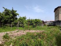 فروش قطعه زمین مسکونی 200 متری باقیمت مناسب در شیپور