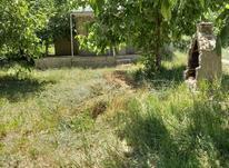 باغ،قشلاق ورکانه 730 متری در شیپور-عکس کوچک