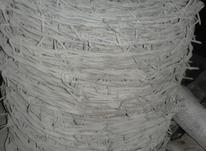 یک عدد توپی سیم خوار دار در شیپور-عکس کوچک