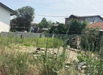 فروش فوری زمین بافت مسکونی دور دیوار باسند تک برگ در شیپور-عکس کوچک
