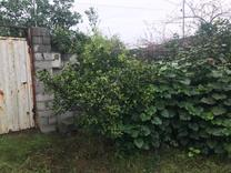 فروش زمین مسکونی 205 متر دربابلسر شورک در شیپور