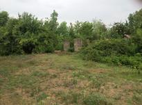 فروش زمین مسکونی 300 متر در سیاهکل در شیپور-عکس کوچک