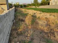 فروش زمین مسکونی 300 متر در جاده فرح آباد در شیپور-عکس کوچک