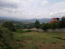 فروش زمین مسکونی 1000 متر در تنگ لته در شیپور