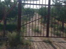 10 قطعه باغ 1000 متری دارای چاه. 250 بالاتر از کمر بندی در شیپور