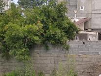 زمین 200 متری شهرکی  دارای بافت  در شیپور
