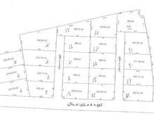 فروش زمین مسکونی 250 متر در امیرکلا در شیپور