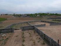 فروش زمین مسکونی 1000 متر در دماوند در شیپور