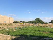 فروش 2000 متر زمین در شهریار در شیپور