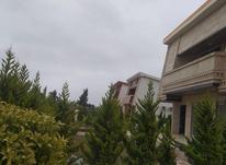 فروش زمین مسکونی 300 متر در جویبار در شیپور-عکس کوچک