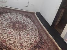 فرش بدون هیچ ایراد و نقصی در شیپور