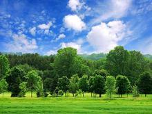 250 متری باسند تک برگ ملکی مناسب سرمایه گذاری در شیپور