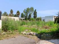 فروش زمین با مجوز ساخت بلوار کریمی در شیپور