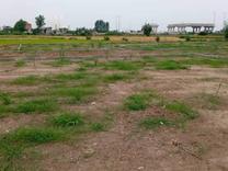 فروش زمین 250 متر در میدان بوله کلا در شیپور