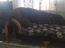 تمام لوازم منزل فوری فروشی در شیپور