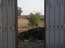 فروش زمین داخل بافت روستائی در شیپور