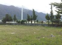 فروش زمین مسکونی 900 متر در سلمان شهر در شیپور-عکس کوچک