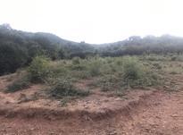 زمین 274 متر در کلاردشت در شیپور-عکس کوچک