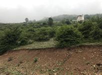 زمین 2034 متر در کلاردشت در شیپور-عکس کوچک