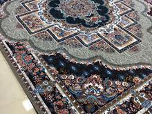 فرش ناردون فیلی در شیپور