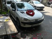 اجاره 206 با راننده در شیپور