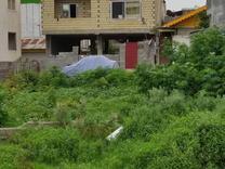زمین مسکونی 186 متر در تالش در شیپور