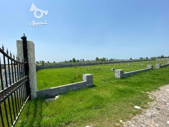 فروش زمین با مدارک کامل در گروه خرید و فروش املاک در گیلان در شیپور-عکس1
