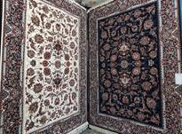 فروش فرش مشهد با قیمت استثنایی در شیپور-عکس کوچک