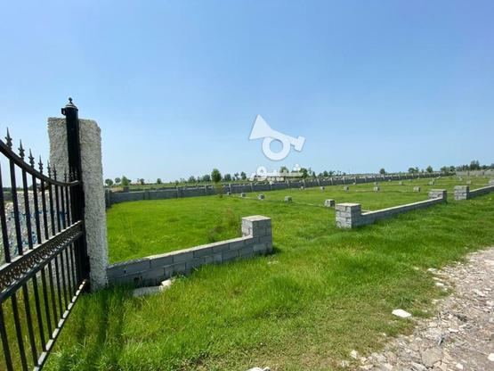 زمین سنددار قیمت مناسب در گروه خرید و فروش املاک در گیلان در شیپور-عکس1